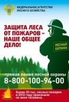Защита леса